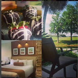 desserts and guest rooms at the grand cypress resort