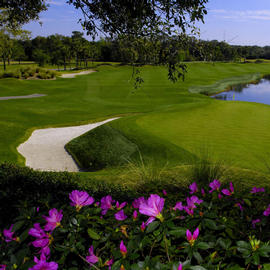 South 6 Orlando golf course at Villas of Grand Cypress