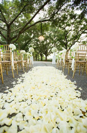 ceremony aisle covered in flower petals