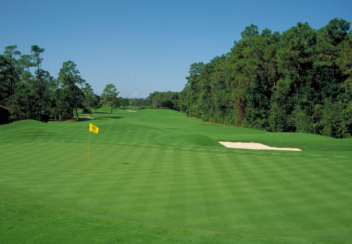 The Green at Villas of Grand Cypress in Orlando, FL
