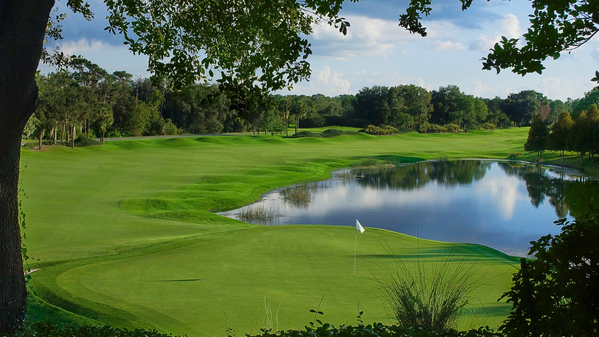 Golf Course at Villas of Grand Cypress Orlando, FL
